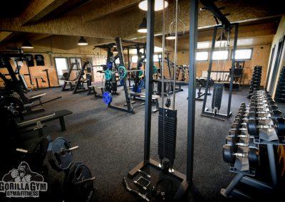 Gorilla gym, Košice, Slovensko