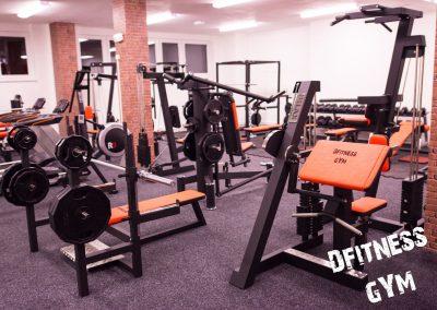 dfitness-gym-2